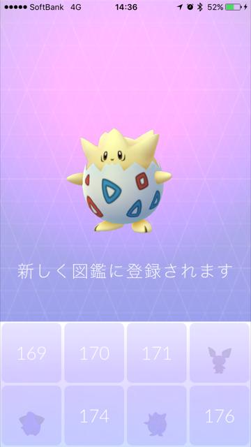 5km ポケモン タマゴ go